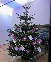 The cards with the children's wishes on one of the Christmas trees.